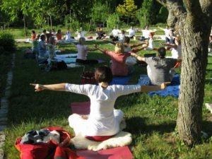 Yoga meets Sport im Park